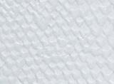 パイソンホワイト